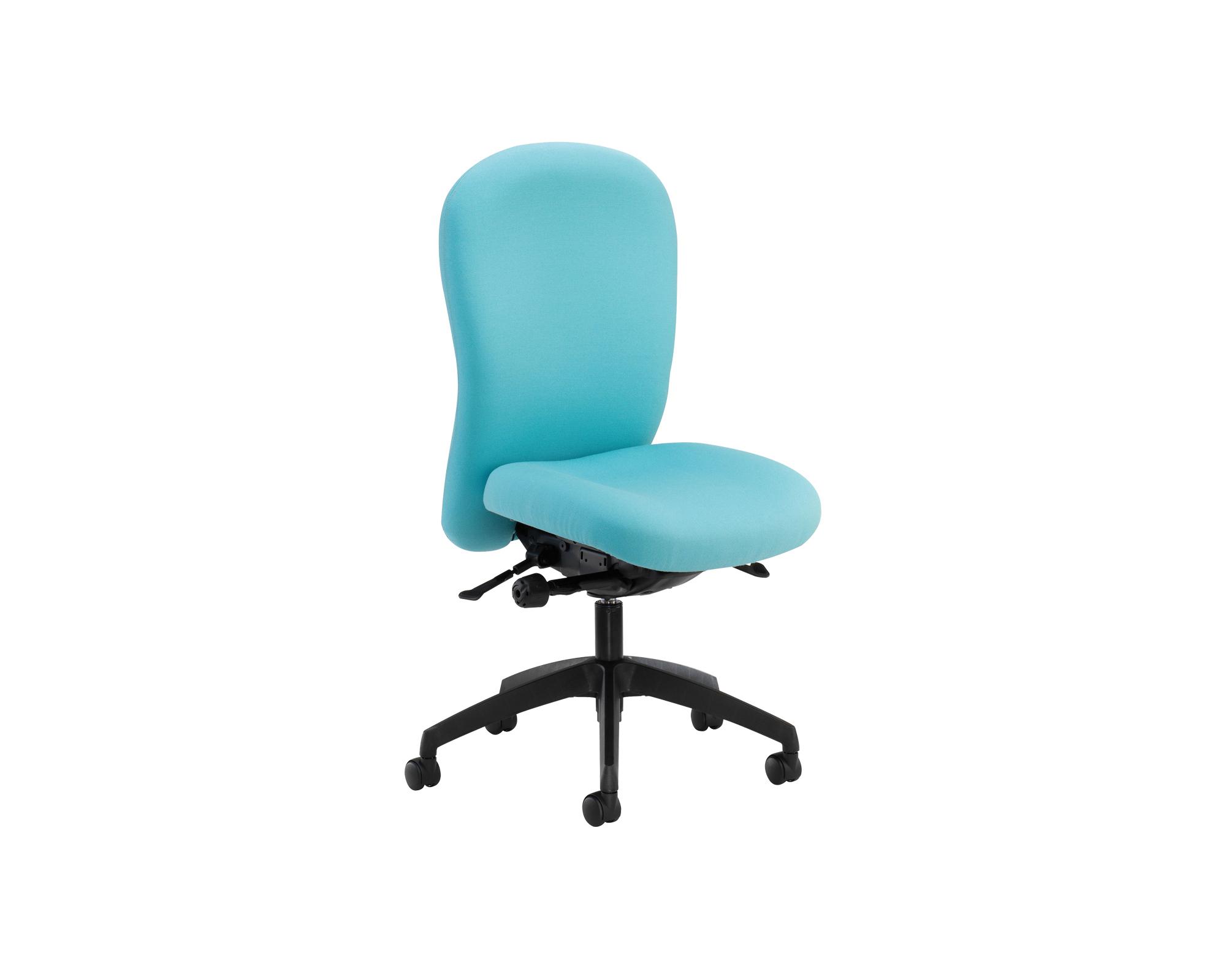 Posturemax ergonomic office chair - Ergo desk chairs ...