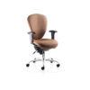 Ergonomic Task Chair