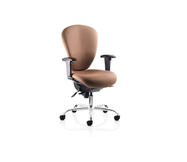 Sphereoid Ergonomic Task Chair