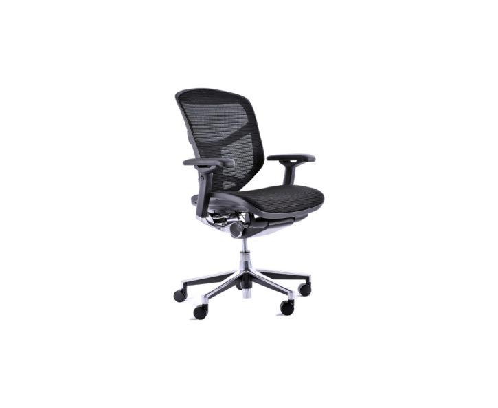 Stylo Mesh Office Task Chair